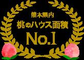 熊本県内桃のハウス面積No.1