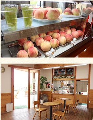 一年中、甘い果実の香りに包まれた観光農園の写真02